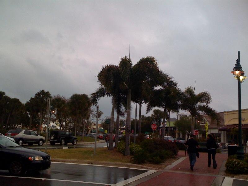 Blustery Day in Sarasota