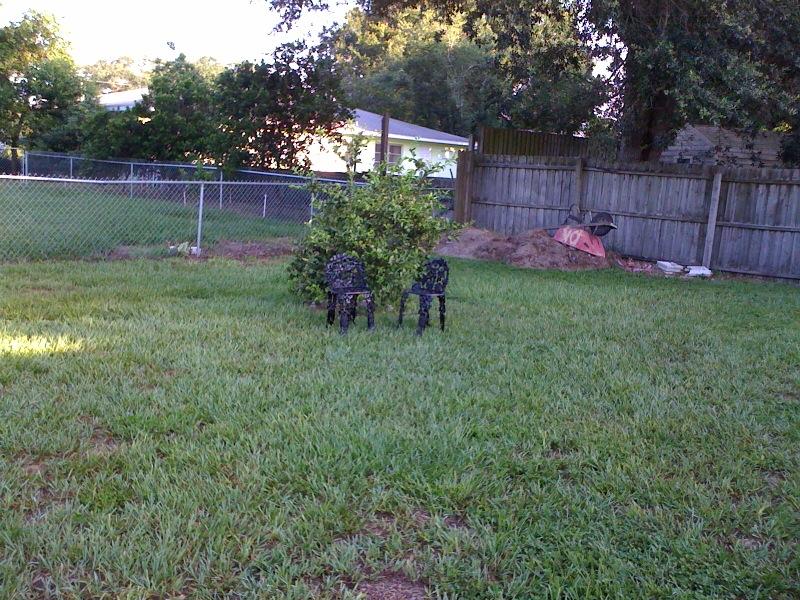 Backyard Disaster